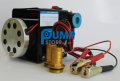 12V 24V Heavy Duty Fuel Oil Diesel Transfer Pump 70 L/min